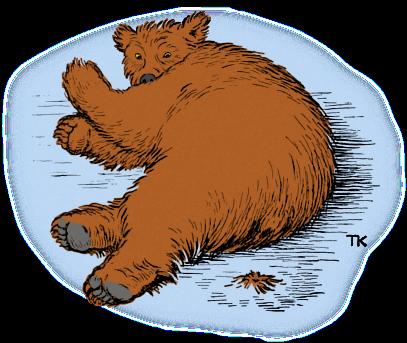 Hvorfor bjørnen er stubbrumpet